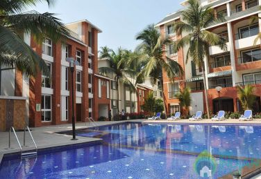 Beautiful Pool Facing 1BHK Apt. 205 Arpora