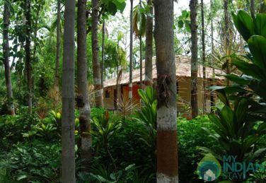 Ideal Homestay For Family Near Mysuru