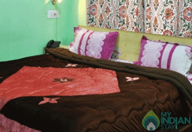Blissfull Comfortable Stay In Srinagar, J&K