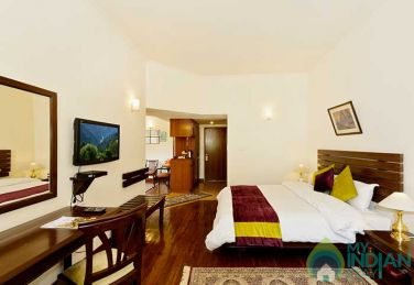 Exotic Stay In Manali , HP