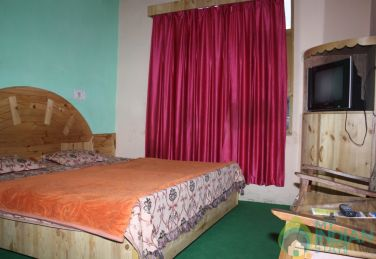 Deluxe Room in a Guest House In Kasol