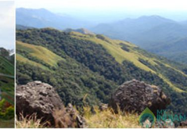 Beautiful Home Stay With Stadard AC Rooms In Chikmagalur